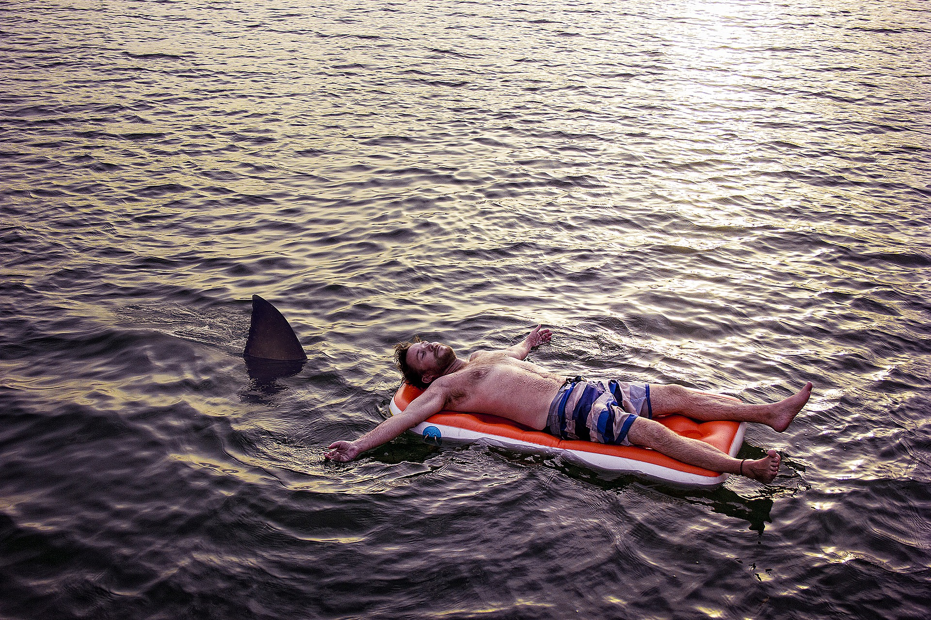 Köpek balığı, deniz yatağında güneşlenen adama saldırıyor.