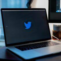 Masanın üzerinde duran bir laptop'un ekranında Twitter kuşu logosu var.