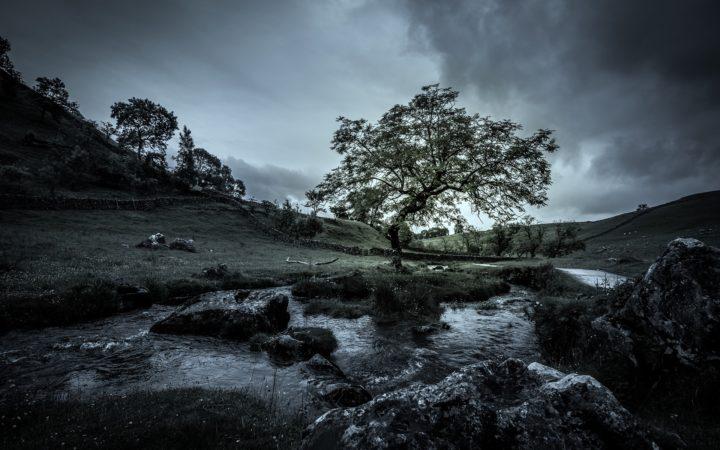 Son derece kasvetli bir mekanda yalnız bir ağaç. Hava kapalı, altında ırmak akıyor. Hüzün verici bir tablo.